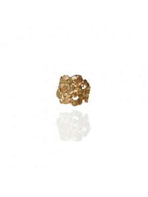 Złoty pierścień z płatków- Jabłonka