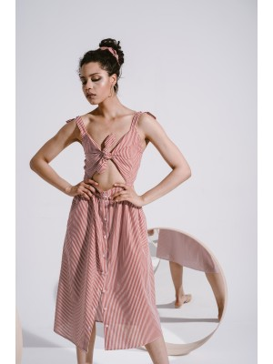 ARALIA STRIPED DRESS